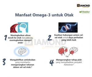 manfaat-omega-3-untuk-otak