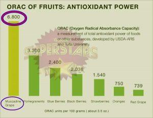 18-Ujian-ORAC-Muscadine-Grape