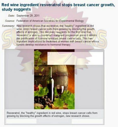 jurnal-sains-resveratrol-jadi-ubat-kanser.